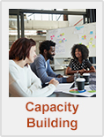 Link to Capacity Building Page